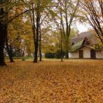 Hetesi ősz